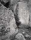 Lone Grave Butte #783, 2009