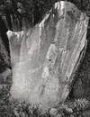 Lone Grave Butte #1266, 2013