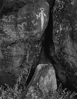 Lone Grave Butte #1644, 2014
