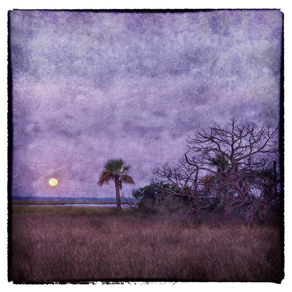 Moon_Rise_Over_Marsh