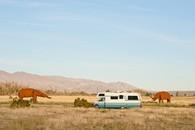 Dry Camping. Anza-Borrego, CA