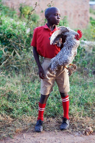 Rooster, Pride in the Uniform series, Africa