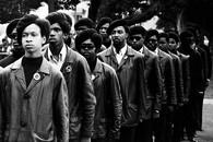 Panthers on Parade, Black Panther Series, Oakland