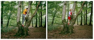Tree Climbing, 2011