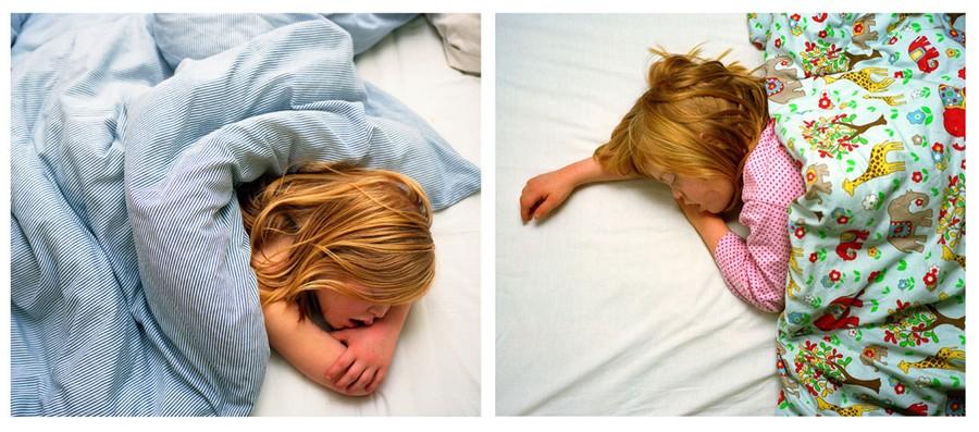 Bed, Furze Croft | Bed, Portland Road