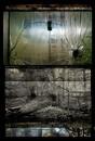 Underwater Window