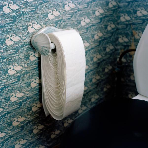 Toilet-roll loosened