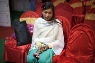 Gerber Daisy (Shimla Wedding), 2012