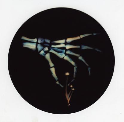 Fungi Luminogram 33 - Picker's hand