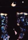 Fungi Luminogram 12 - Trench/Cousteau