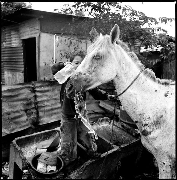 Walter (Washing Horse). La Chureca, Managua, Nicar