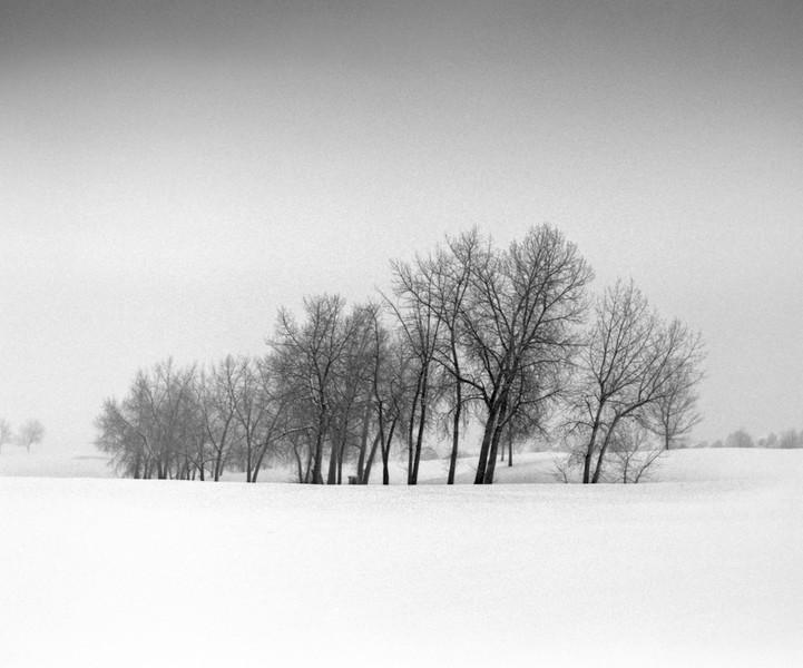 Winter 5