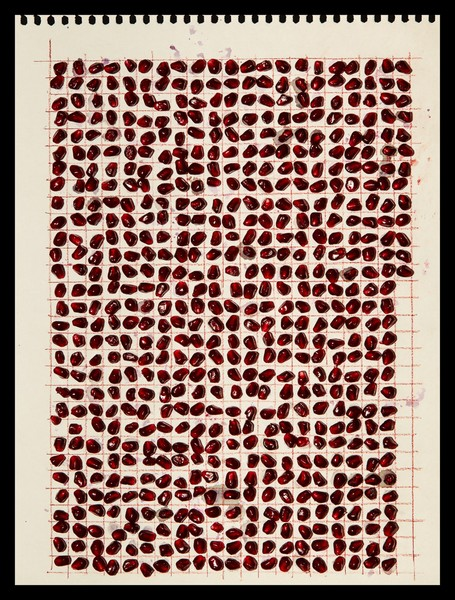 613 Pomegranate Seeds