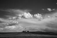 Wilsal Montana