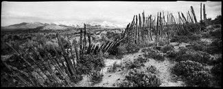 Huntington Fence