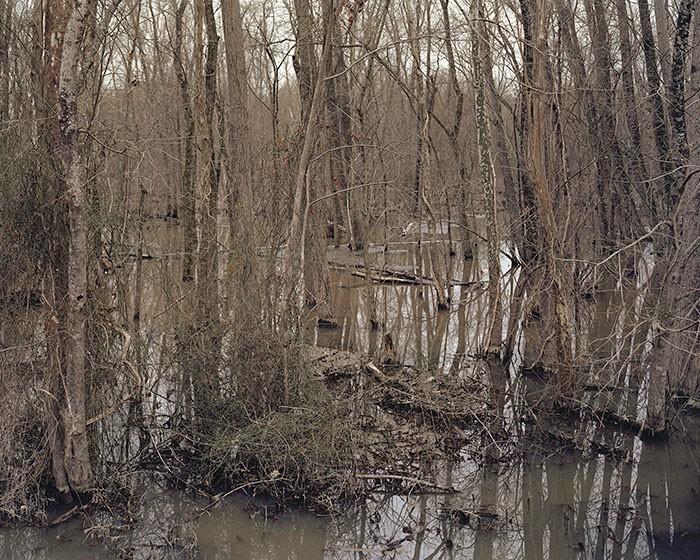 Battleground of Buck Head Creek, Georgia