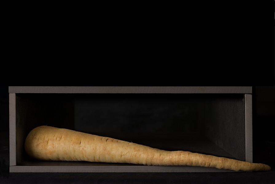 Parsnip in a Box