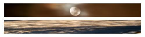Lunar Reverie, 2013