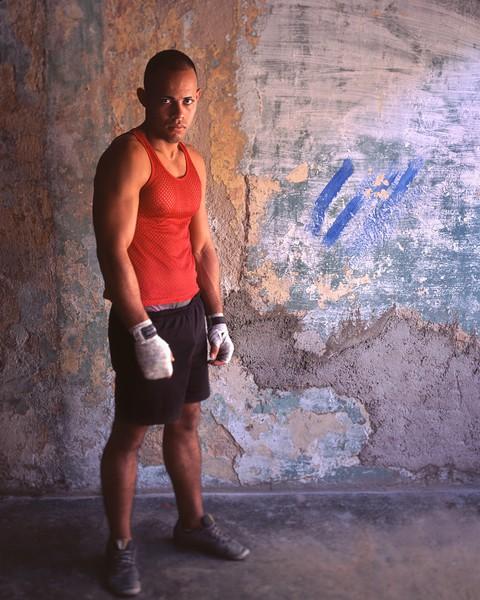 Boxer / Havana