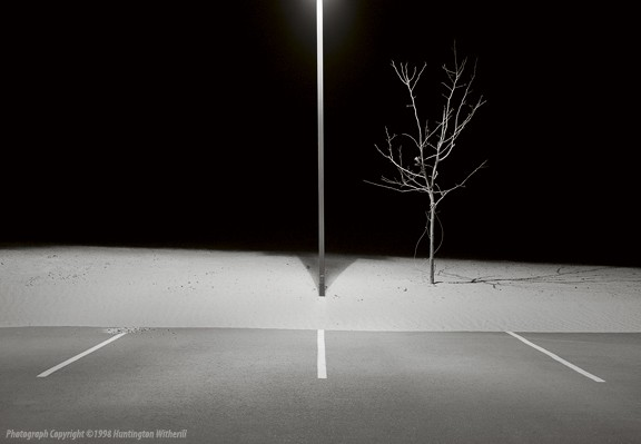 01064 • Lamp Post and Tree, Page, AZ, 1998
