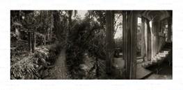 Trails ©