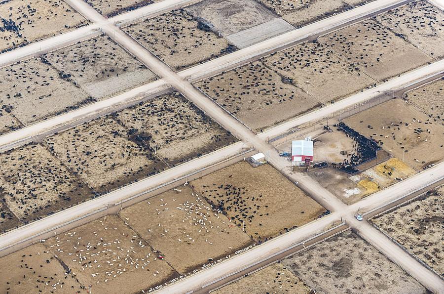 Red Pails, Yuma, CO, 2013.