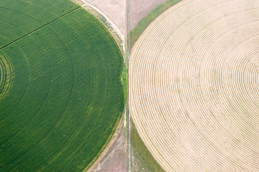 Crop Intersections, Wiggins, CO, 2013