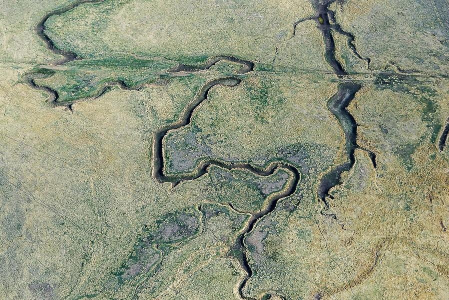 Snake Impressions, Deer Trail, CO, 2015