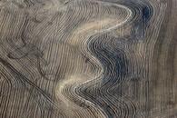 Crop Wanderings, Strasburg, CO, 2015
