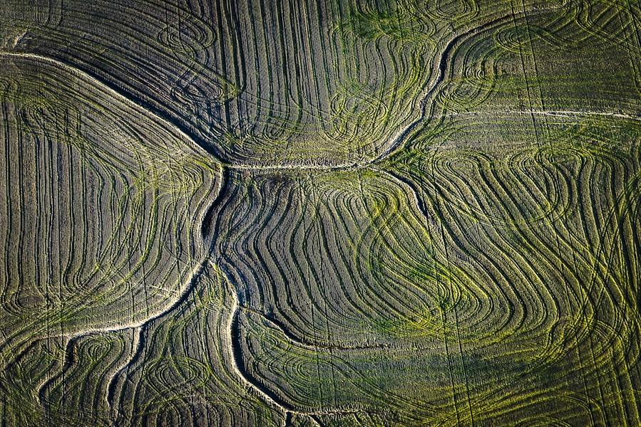 Cultivation Swirls, Strasburg, CO, 2014