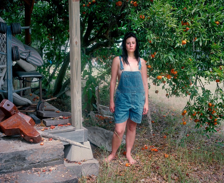 Under the Tangerine Tree