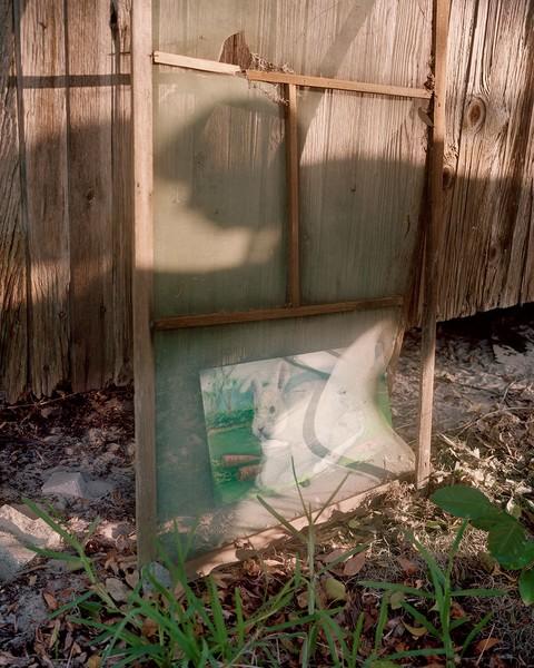 Runaway Bunny  (Grandmother Dorothy's Painting)