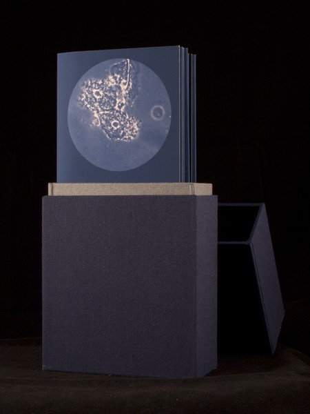 Transmission Artist Book: Bacterial vaginosis