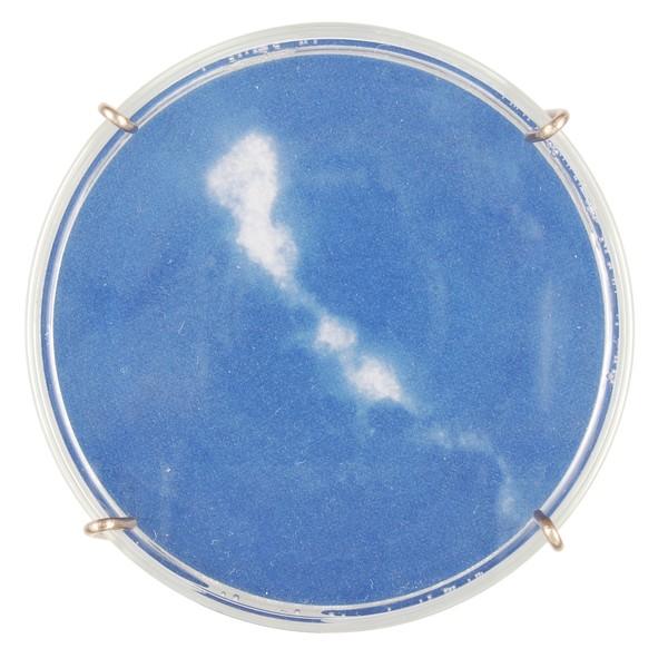 Chlamydia trachomatis (detail)