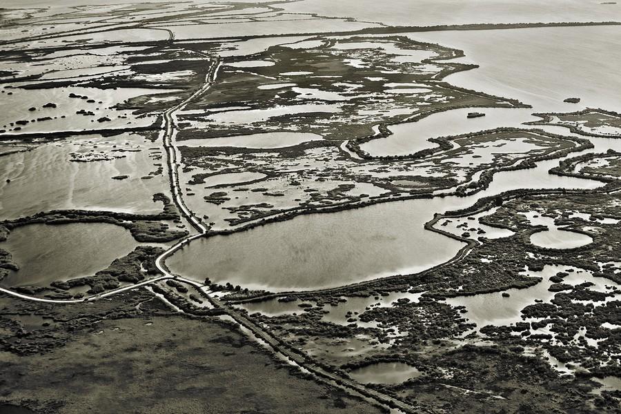 Blackpoint National Wildlife Refuge, FL