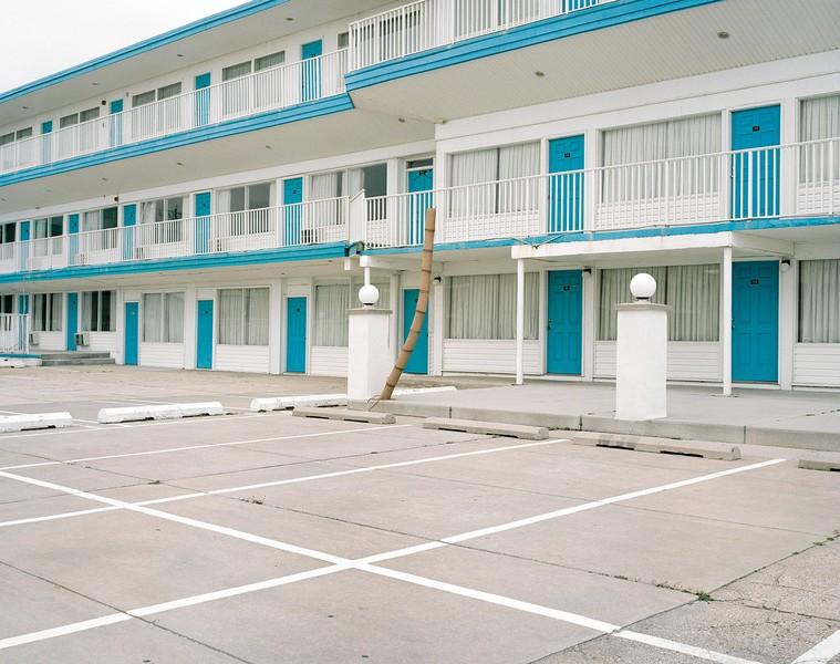 Palm Tree, Apollo Resort Motel
