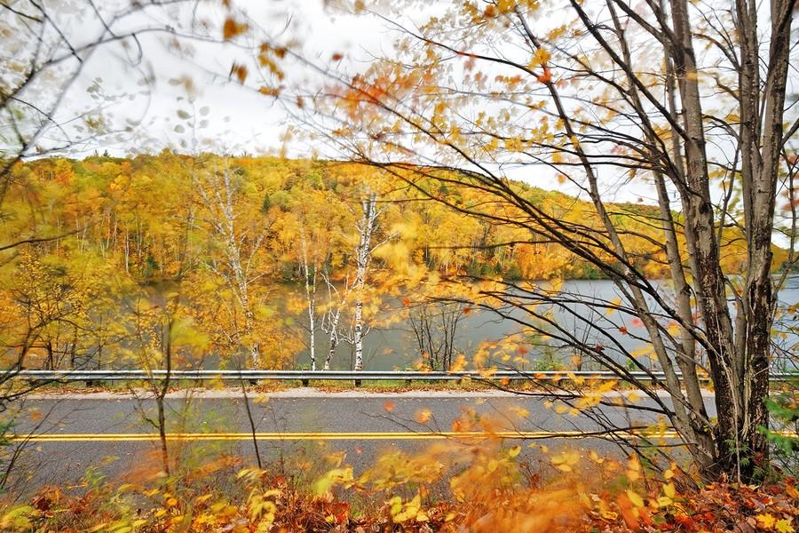 Autumn (1) - East Aldfield, Quebec
