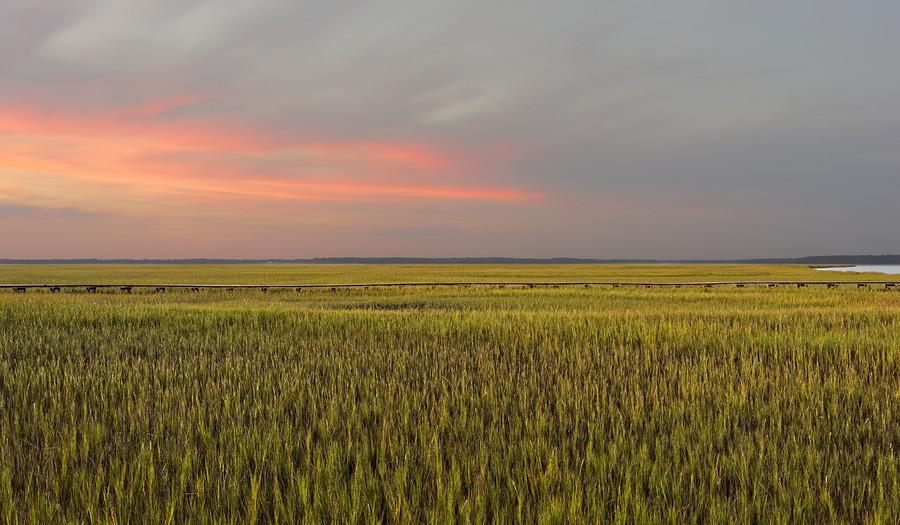 Salt Marsh - Sunbury, Georgia