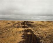 Kursk 1943, Hill 226.6, 2008