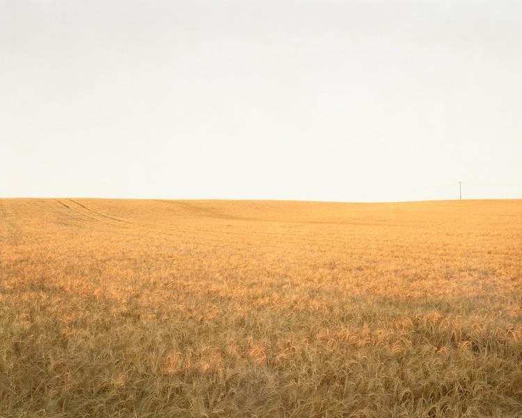 The Hindenburg Line 1918, The Knoll, 2003