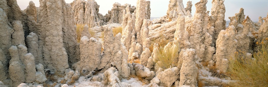 Tufas In Snow