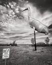 World's Largest Sandhill Crane, Steele, ND