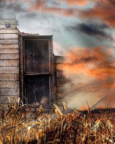 Storm harvest