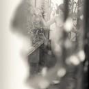 Misthaven #18
