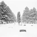 Bozeman Cemetery, Montana