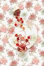 Marchesa Camellia with Rhubarb