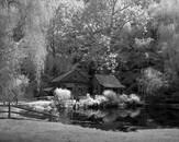 Cuttalossa Farm