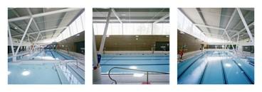 Cummer Park Triptych