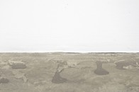 Casey Kaplan-Liam Gillick: Scorpion and und et Fel
