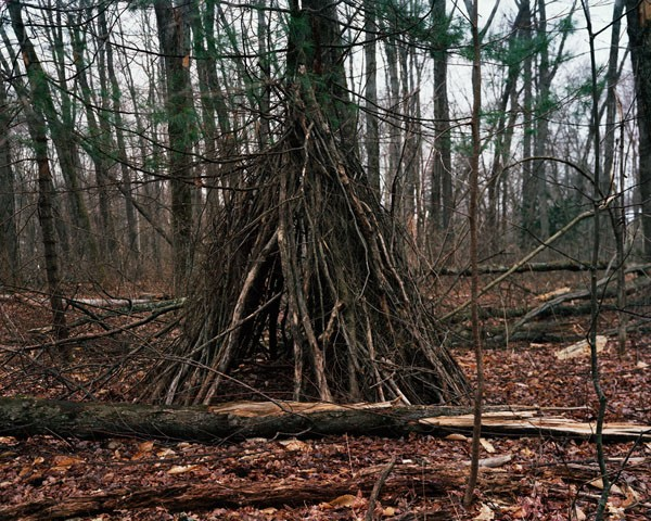 Fort in the Woods